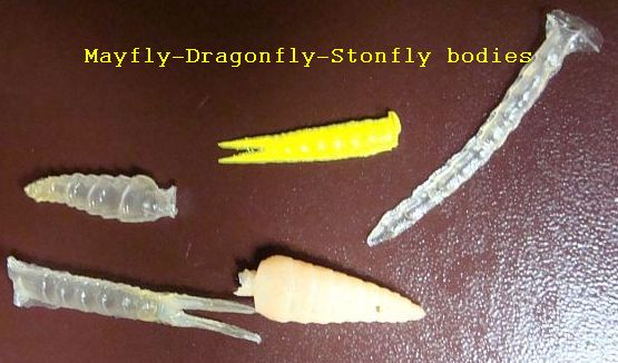 Mayfly Stonefly Dragonfly bodies